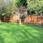 PK garden services profile image.