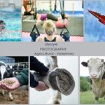 Sturgess Commercial Photography profile image.