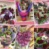 From the Heart Florists profile image