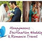 Destination Weddings by Dreamscape Travel Group profile image.