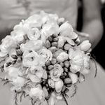 Alex Wedding Photography profile image.