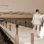 DI Wedding Photography profile image.