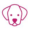 Sweet Paw Dog Training profile image