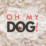 Oh My Dog! profile image.