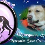 Renegades Save Our Service Animals Foundation profile image.