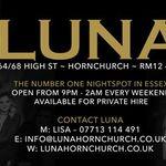 Luna Lounge profile image.