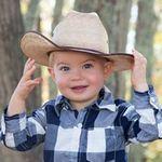 The Little Photo Shop profile image.