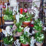 Aleta's Flowers & Gifts profile image.