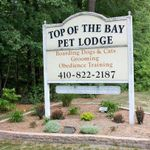 Top of the Bay Pet Lodge profile image.