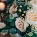 Peacock Wedding Flowers profile image.