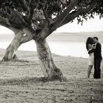 Alisha + Brook Photographers profile image.