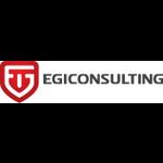 EGI Consulting profile image.