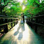 Joey Ikemoto Photography profile image.