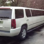 Expo Limousine profile image.