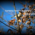 Everlasting Treasures Photography profile image.