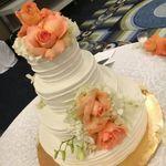 edible creations  profile image.