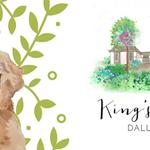 King's Garden profile image.