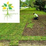 Qualitech Landscaping profile image.