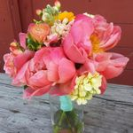 Wild Apples Floral Baraboo WI profile image.