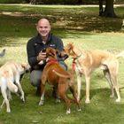 Well Mannered Mutt Dog Training  T/A Dog Training Surrey Ltd