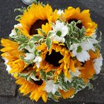 Wendy House Flowers profile image.