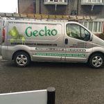 gecko clean ltd profile image.