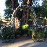 Valley Garden Center profile image.