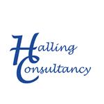 Halling Consultancy profile image.