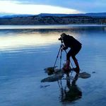 WendyLea Photography -   Heber City, Utah profile image.