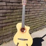 Guitar Tuition & Lessons profile image.