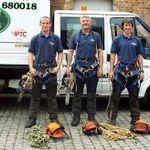 Shropshire Tree Services Ltd  profile image.