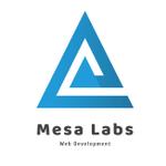 Mesa Labs profile image.