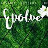 Evolve Flowers Ltd profile image