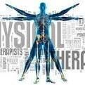 NY Physical Therapy and Wellness profile image.