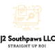 J2 Southpaw Solutions logo