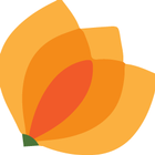 Croziers Flowers logo