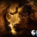 CS Design Studios profile image.