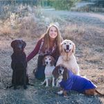 Moving Mountains Dog Training LLC. profile image.