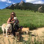 Boulder Pet Care profile image.