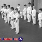Marsden Martial Arts LLP