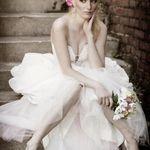 Mike Danen Photography + Cinema profile image.