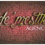 The Demestik Agency profile image.
