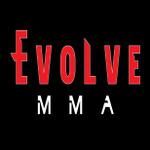 Valor Mixed Martial Arts profile image.
