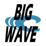 Big Wave Business Solutions profile image.