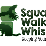 Squawks Walks & Whiskers profile image.