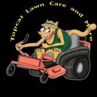 Topcat Lawn Care and more