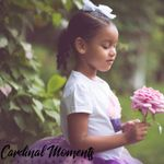 Cardinal Moments Photography profile image.