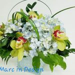 A Marc In Design profile image.