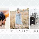 Madine Creative Group profile image.