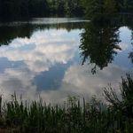 Rainwater Counseling profile image.